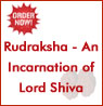 Click Here for Rudraksha